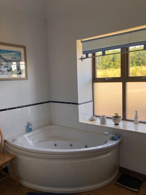 A bathroom with a view. Guests have private bathroom with jacuzzi bath and separate shower cubicle .
