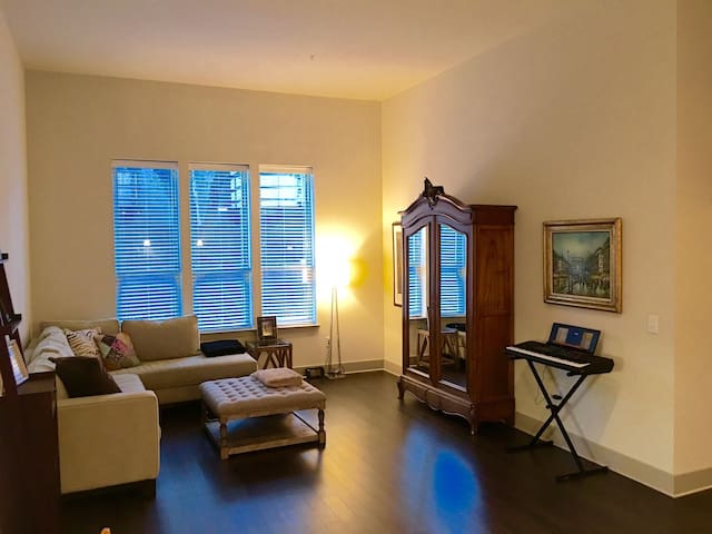 Super Bowl Luxury Apt in best Zip Code in Houston