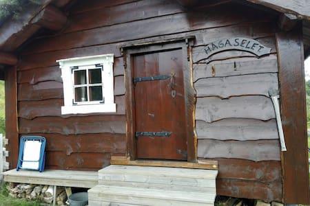Hjelmbrekkestøylen, kabin on mountain - Jølster - Cabin