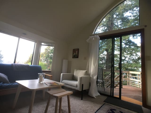 Light Airy Private Treetop Apartment