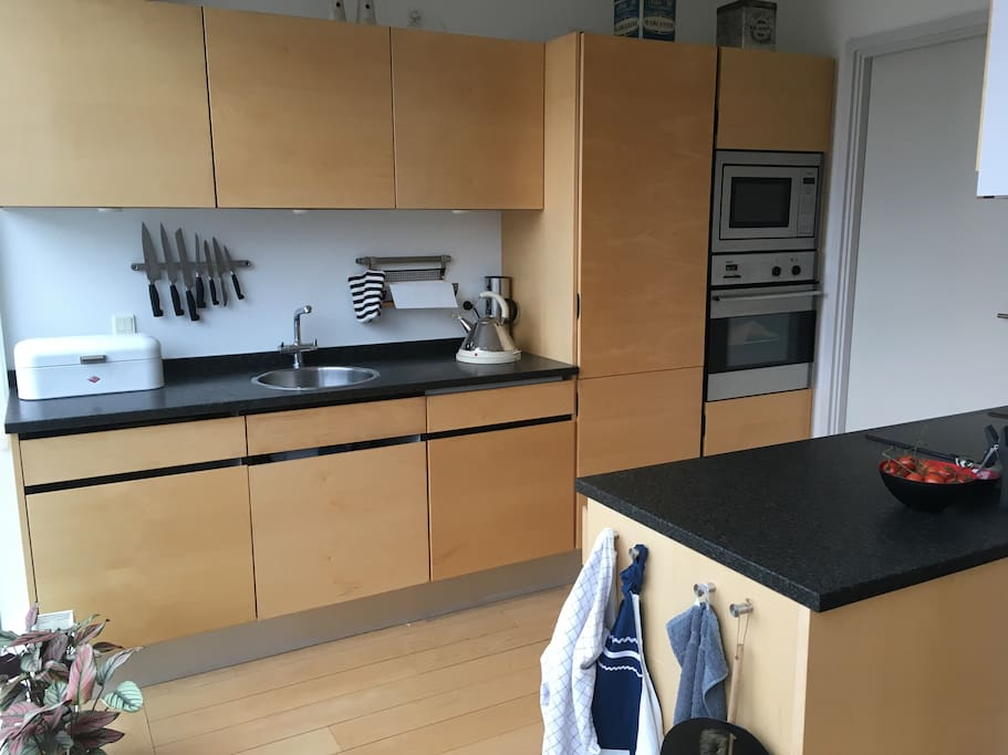 Kitchen with dishwasher, oven and microwave