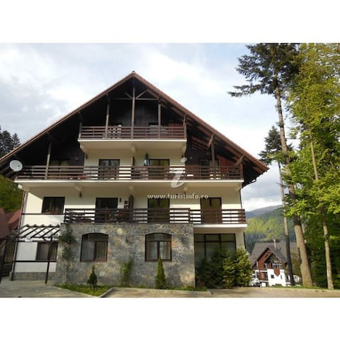 Forest Apartment - Sinaia - Byt