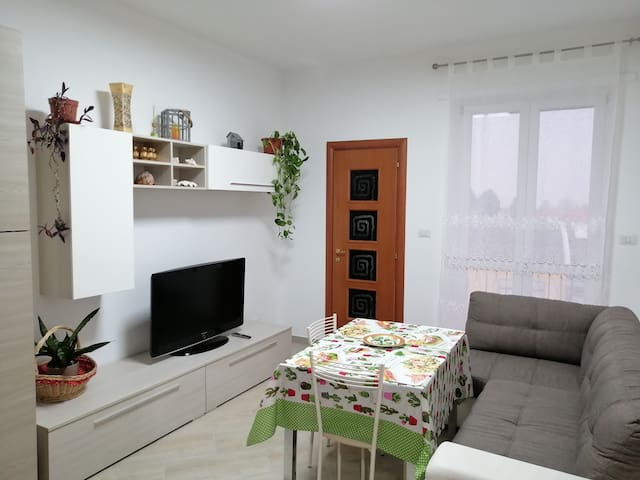 beautiful and bright apartment very comfortable