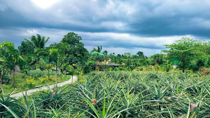 A relaxing house Farm stay in Tagaytay