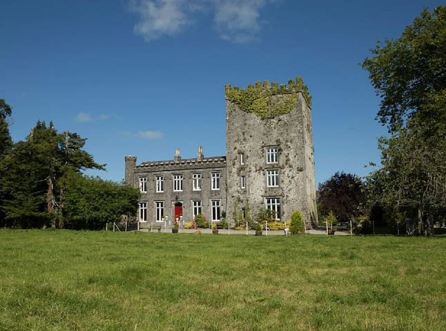 Killaghy Castle, Tipperary - Mullinahone