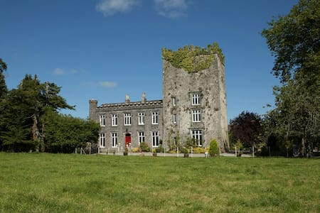 Killaghy Castle, Tipperary - Mullinahone - Schloss