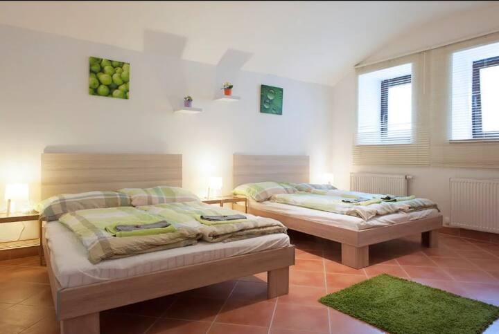 V1  Cozy apartment 5 minutes to centre