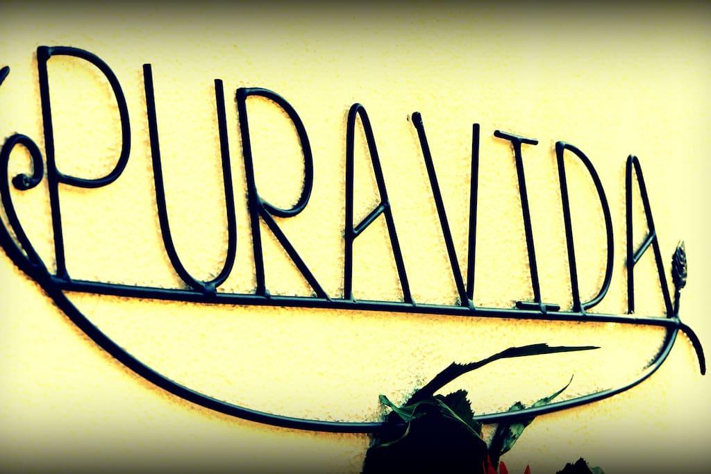 Pure Living @ Pura Vida