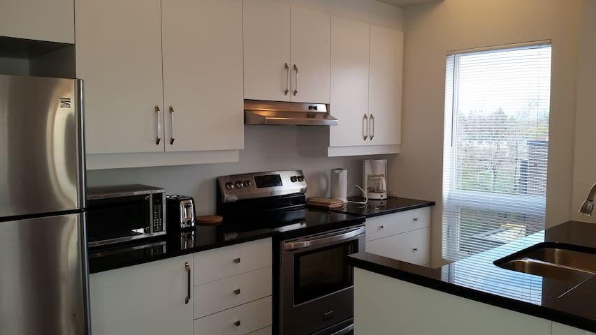 Spacious Sunny Suite - Ottawa - Condominium