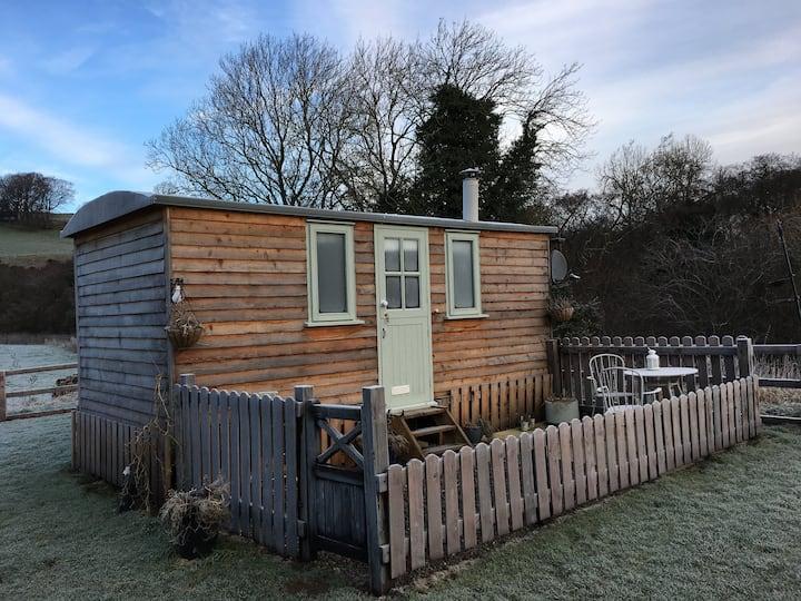 Holmehead Hut: A Cosy Rural Retreat