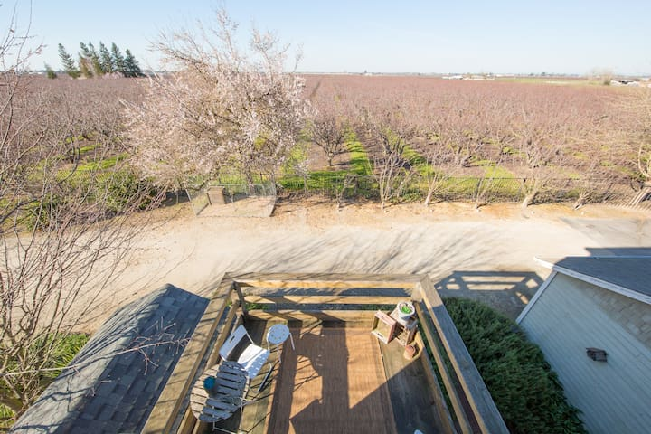 Looking down from the third floor onto the 2nd floor balcony and across the orchards.