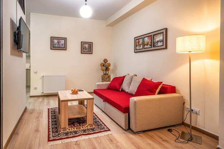 108 New Tiflis Apartment, Saburtalo