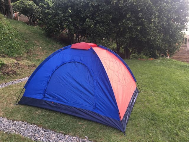 Camping 1 - Café del Jardín