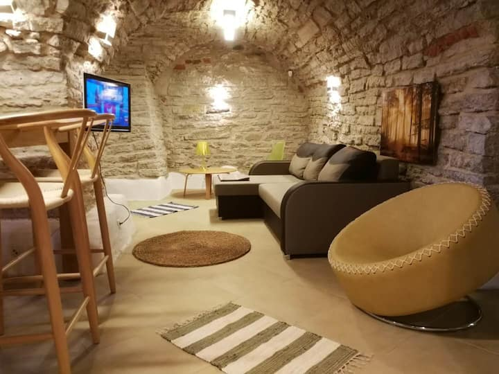Superb Studio Old Town Tallinn, 55 SqM