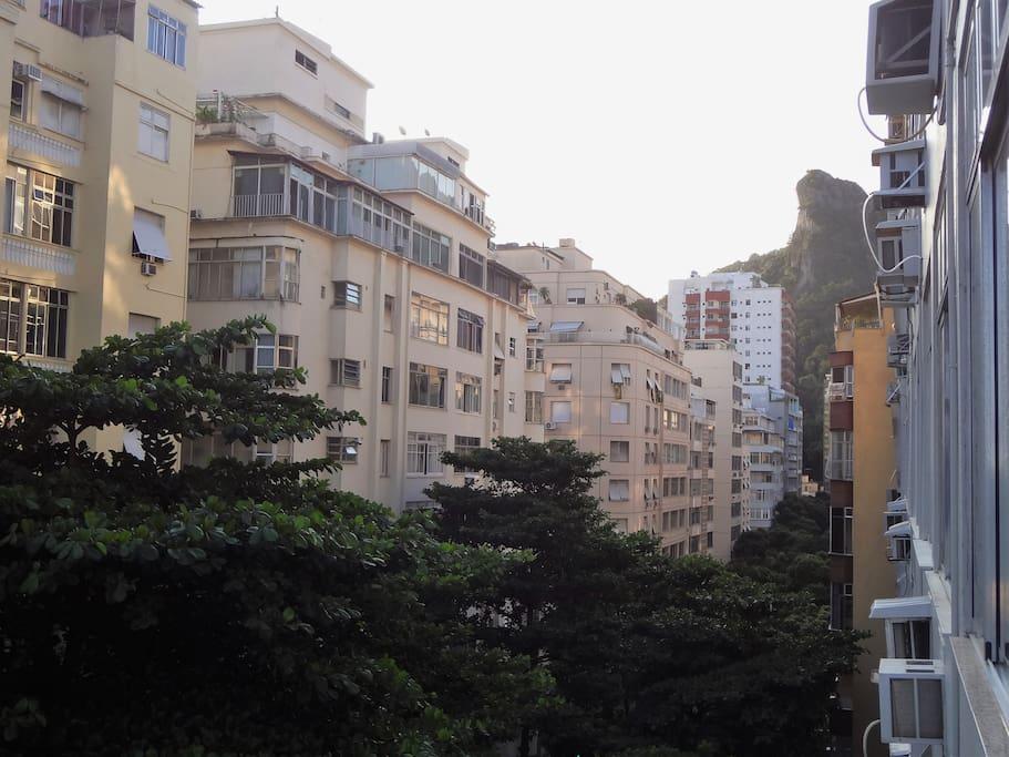 Bela vista em rua arborizada