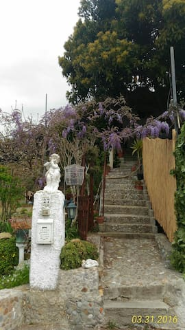 La casa giardino di Nora - Taggia - Wohnung