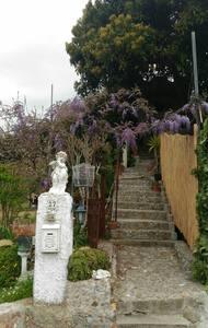 La casa giardino di Nora - Taggia