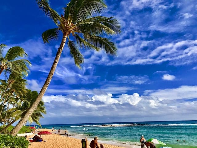 POIPU BEACH OCEANFRONT SANCTUARY PARADISE with A/C
