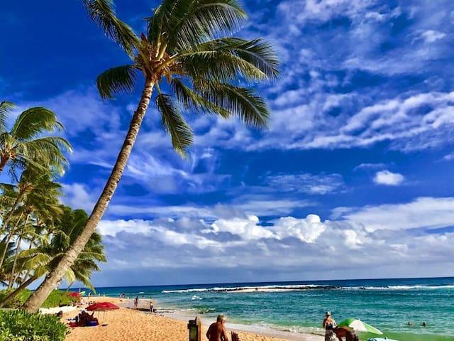 OCEANFRONT POIPU BEACH SANCTUARY IN PARADISE  w/AC
