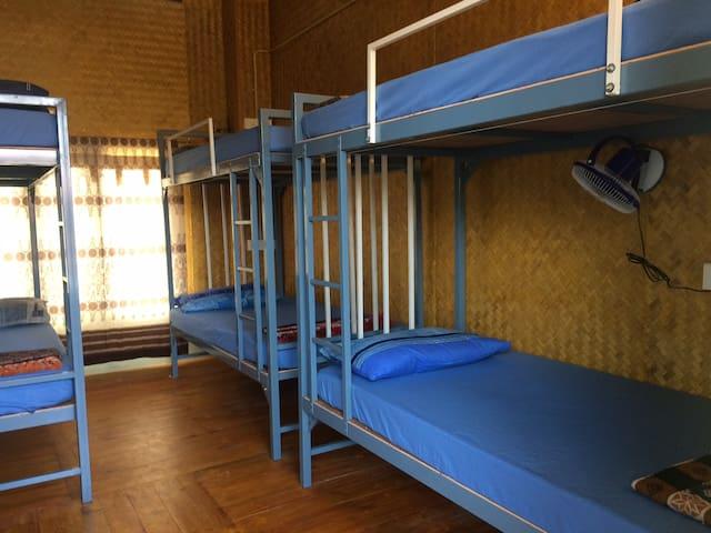 Nice Dorm