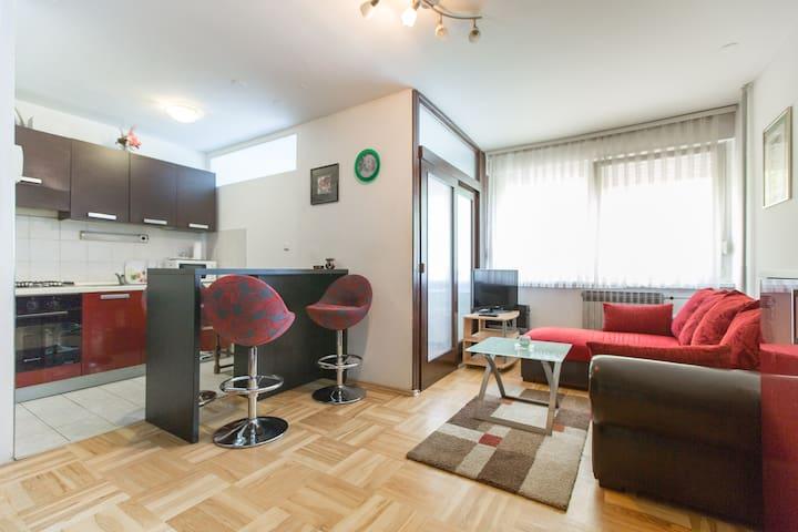 Zagreb, apartment - Zagrzeb - Apartament