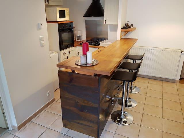 Proche Beaujoire, agreable T2 de 47 m² avec jardin - Nantes - Apartment
