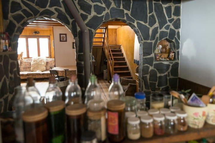 Cama en cuarto mixto compartido en el Bosque 2