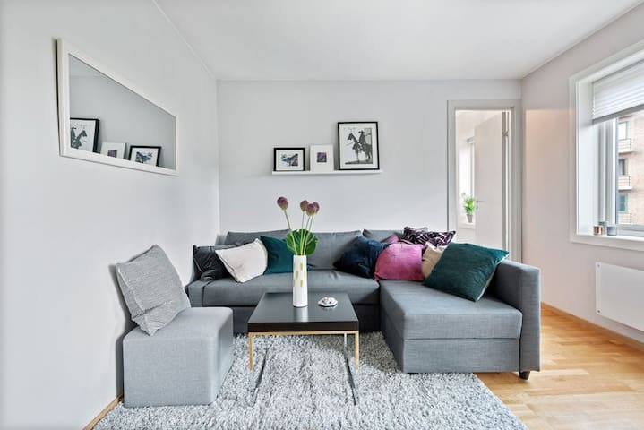 Cozy apartment close to everything in Oslo!