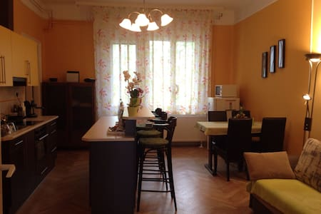 Nice, fully-equipped flat in the very city center - Szeged