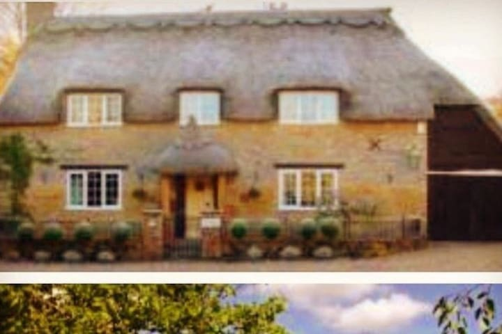 Spacious cottage - Yeovil - House
