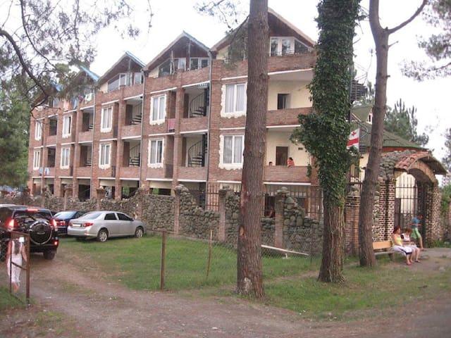 Apartment old house Ureki - Ureki - Wohnung