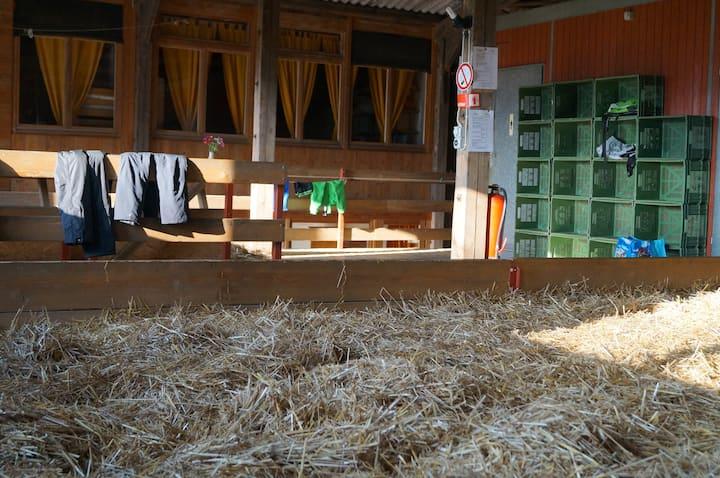 Schlafen im Stroh wie Heidi auf Biohof