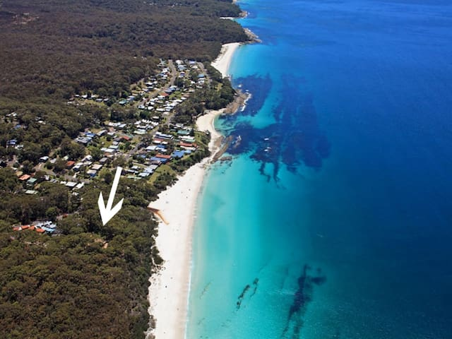 Where The Forest Meets The Sea, Hyams Beach