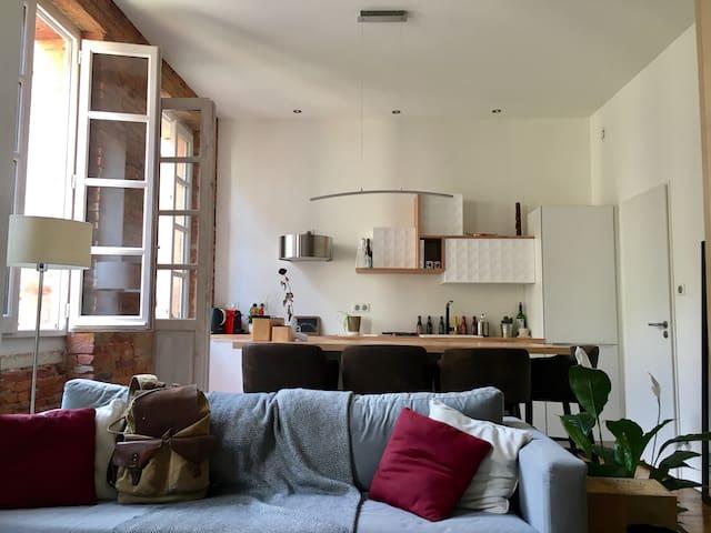 Appartement cosy au coeur de Toulouse