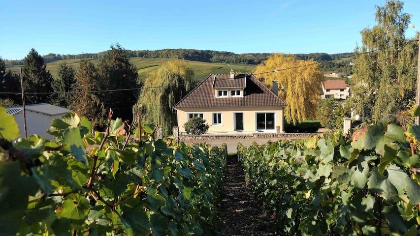 le Moulin des Prés, gîte calme au coeur des vignes