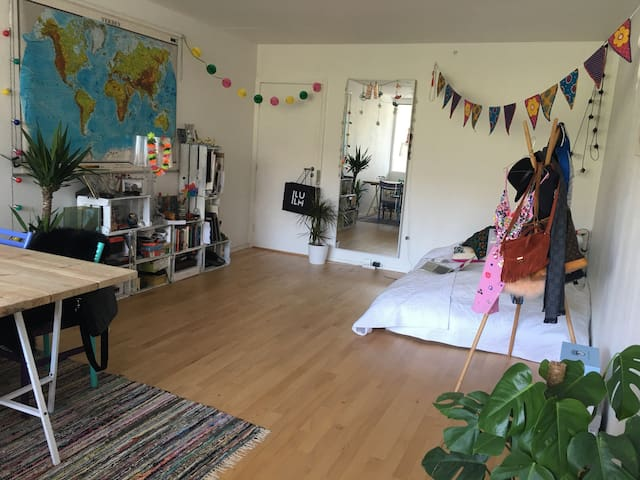 Cozy spacious one bedroom apartment - Frederiksberg