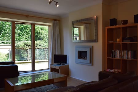 Beautiful Big Ground Floor apartment - Dundrum