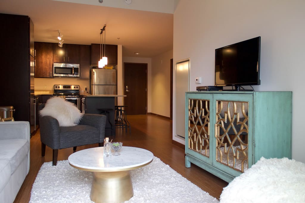 Luxe Apt Between Capitol Campus Apartments For Rent In Madison Wisconsin United States