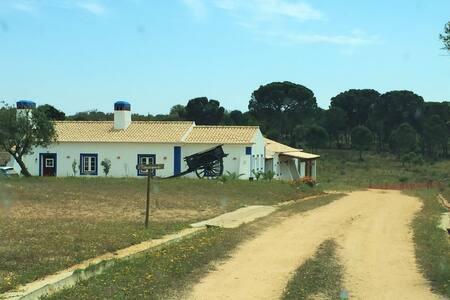 Alentejo´s agritourism Modern villa - Villa