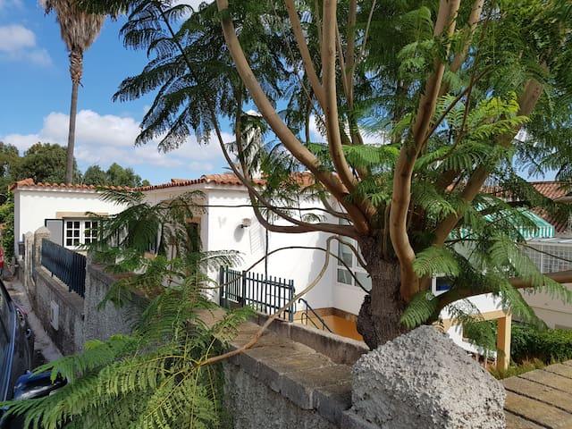 La casita de Cocó - Santa Brígida - Apartment