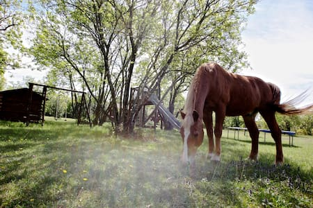 RANCH (with 3 horses) 20 min. from Trieste (NEW) - Štorje