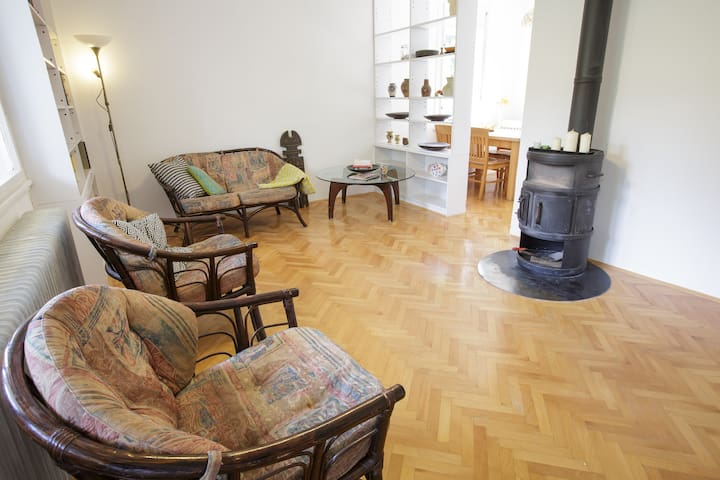 Retro cozy rooms on perfect spot - Ljubljana - Huis