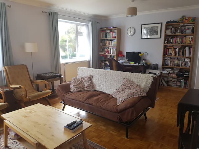 Beautiful and cosy double room - Londyn - Apartament