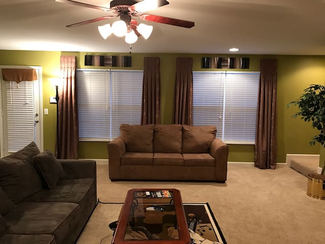 Living / Family Room with Sofa Bed