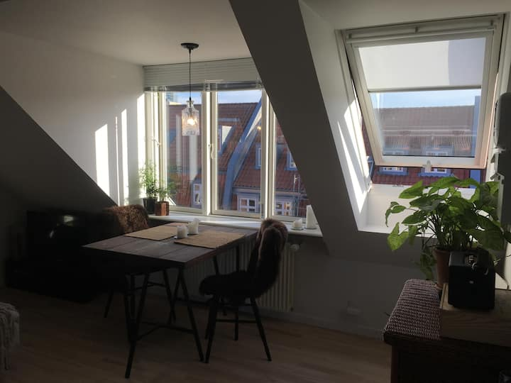 Cozy studio apartment in the city center