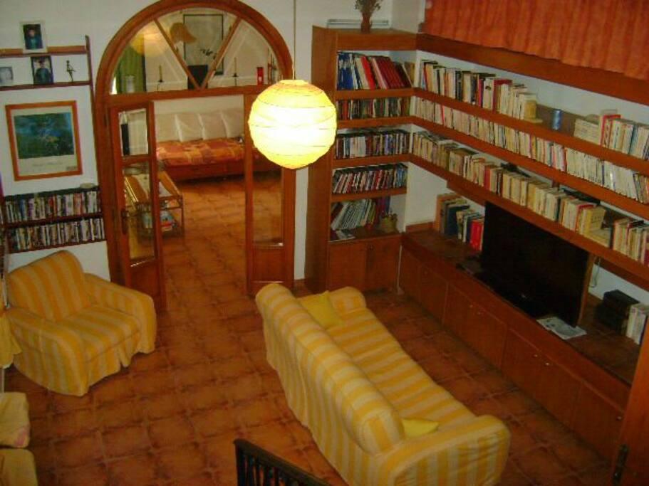 Salons avec biliothèque et dvd-thèque