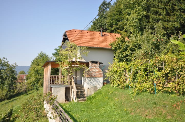 Vineyard cottage Krstinc - Straža - Casa