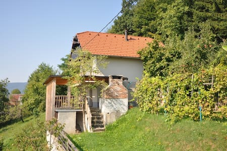 Vineyard cottage Krstinc - Straža - Дом