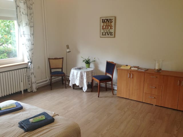 Cozy spacious room in funky house. - Prague - House
