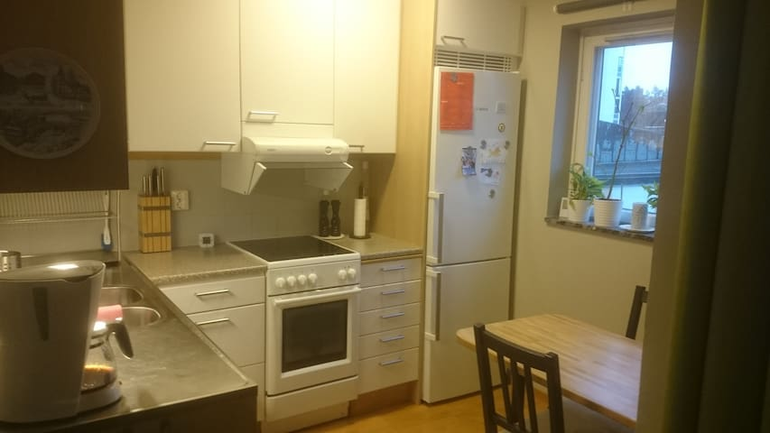 Nice studio apartment in a great location - Stockholm - Wohnung